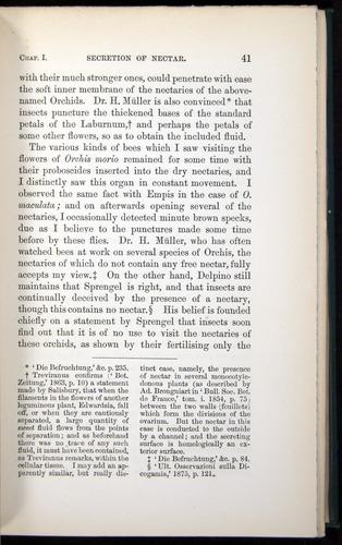 Image of Darwin-F803-1882-041