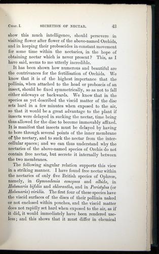 Image of Darwin-F803-1882-042