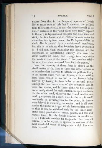 Image of Darwin-F803-1882-044