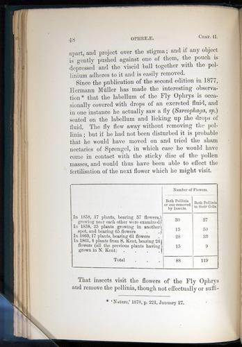 Image of Darwin-F803-1882-048