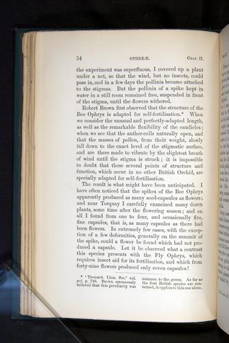 Image of Darwin-F803-1882-054