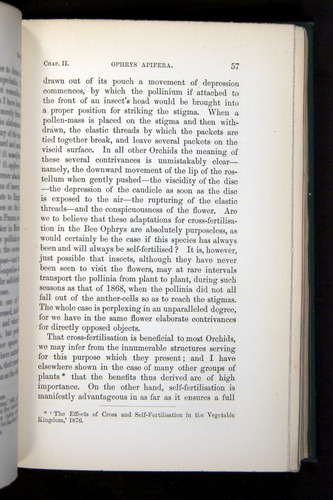 Image of Darwin-F803-1882-057