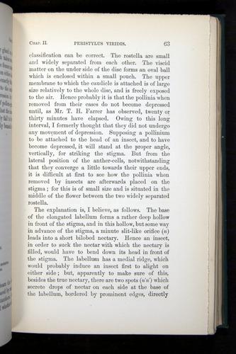 Image of Darwin-F803-1882-063
