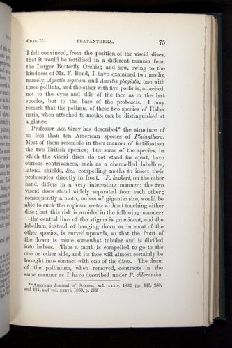 Image of Darwin-F803-1882-075