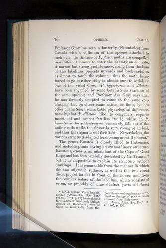Image of Darwin-F803-1882-076