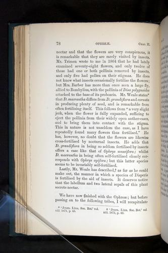 Image of Darwin-F803-1882-078