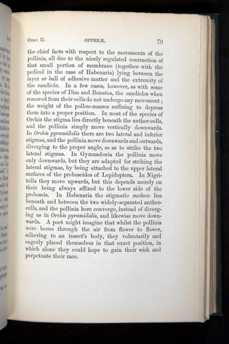 Image of Darwin-F803-1882-079