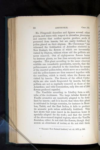 Image of Darwin-F803-1882-090