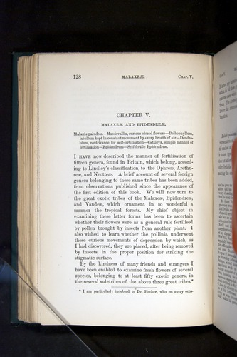 Image of Darwin-F803-1882-128