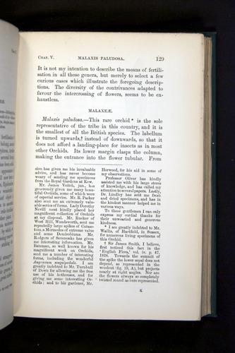 Image of Darwin-F803-1882-129