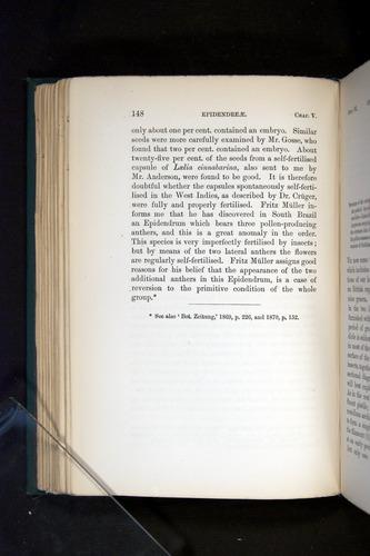 Image of Darwin-F803-1882-148
