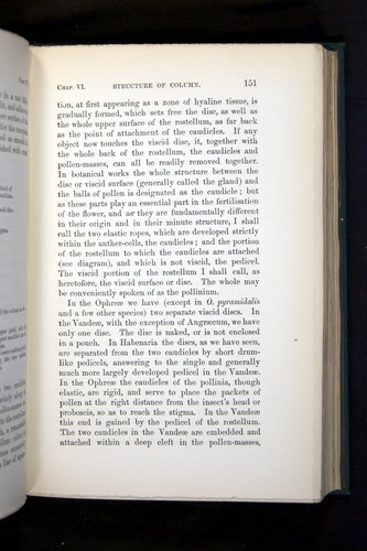 Image of Darwin-F803-1882-151