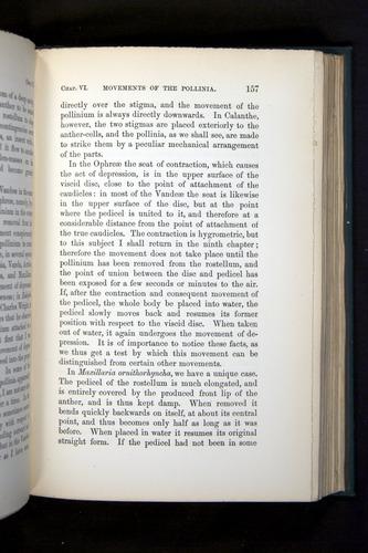 Image of Darwin-F803-1882-157