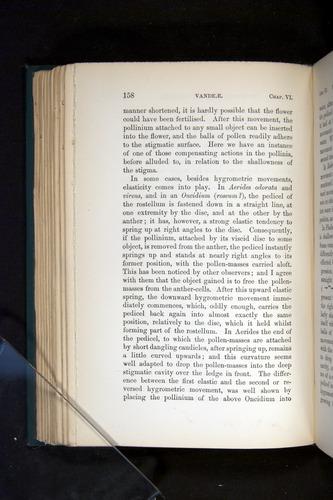 Image of Darwin-F803-1882-158