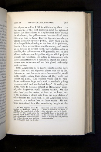 Image of Darwin-F803-1882-165