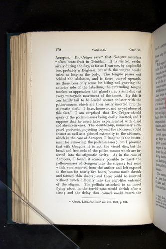 Image of Darwin-F803-1882-170