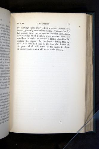 Image of Darwin-F803-1882-177