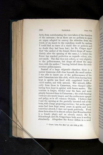 Image of Darwin-F803-1882-200