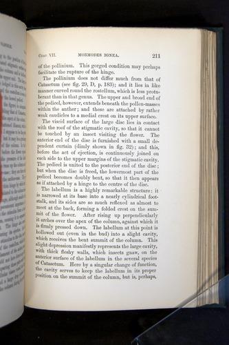 Image of Darwin-F803-1882-211