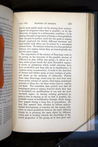 Image of Darwin-F803-1882-233
