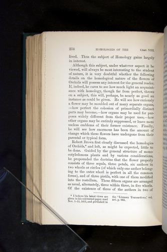 Image of Darwin-F803-1882-234