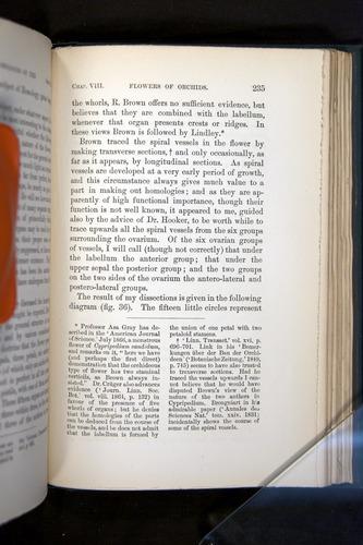Image of Darwin-F803-1882-235