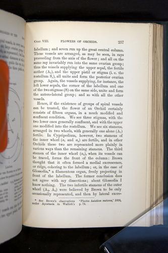 Image of Darwin-F803-1882-237