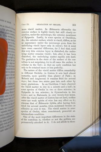 Image of Darwin-F803-1882-251