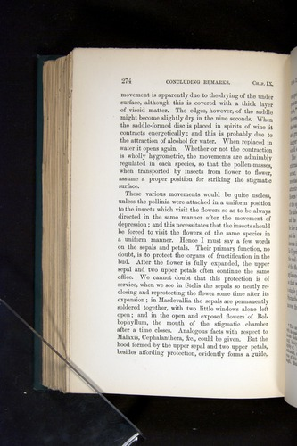 Image of Darwin-F803-1882-274