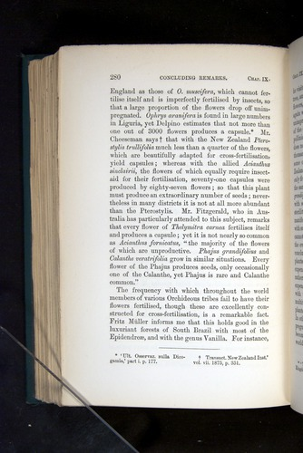 Image of Darwin-F803-1882-280