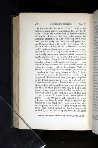 Image of Darwin-F803-1882-288