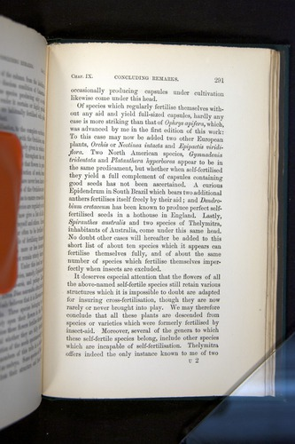 Image of Darwin-F803-1882-291