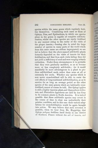 Image of Darwin-F803-1882-292