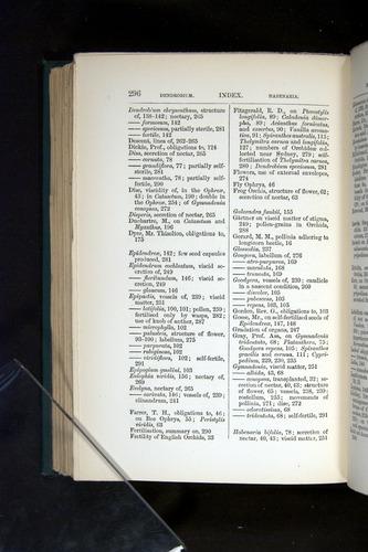 Image of Darwin-F803-1882-296