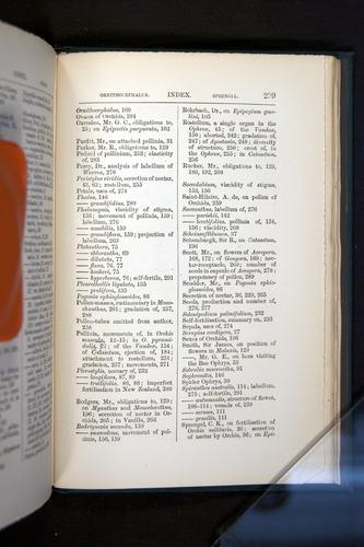 Image of Darwin-F803-1882-299