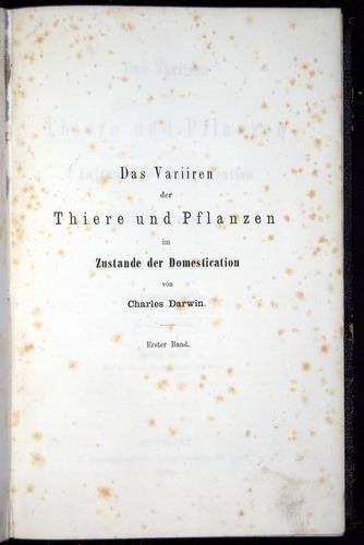 Image of Darwin-F914.1-1868-00000-tp1