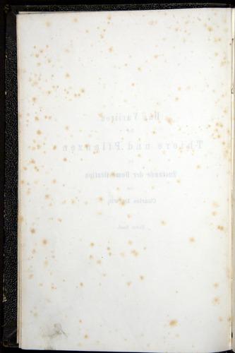 Image of Darwin-F914.1-1868-00000-tp1v