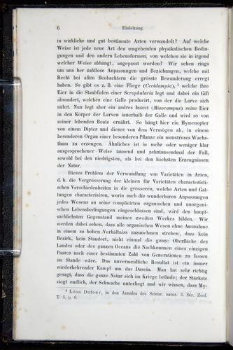 Image of Darwin-F914.1-1868-00006