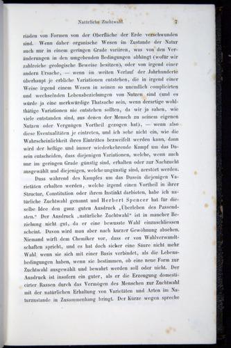 Image of Darwin-F914.1-1868-00007
