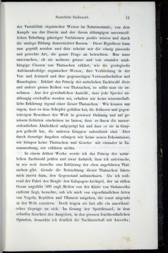 Image of Darwin-F914.1-1868-00011