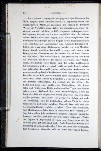 Image of Darwin-F914.1-1868-00014