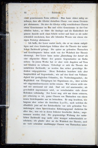 Image of Darwin-F914.1-1868-00016