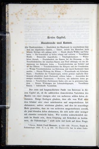 Image of Darwin-F914.1-1868-00018