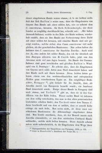 Image of Darwin-F914.1-1868-00028