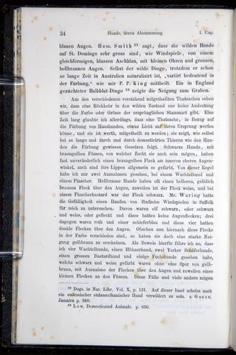 Image of Darwin-F914.1-1868-00034
