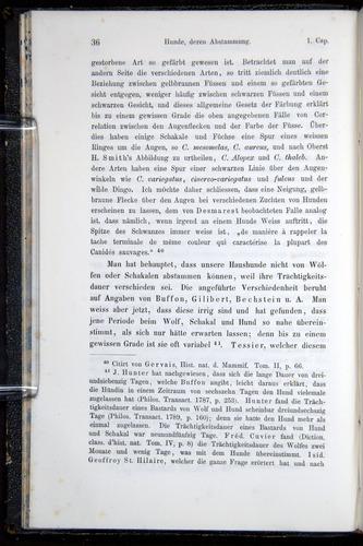 Image of Darwin-F914.1-1868-00036
