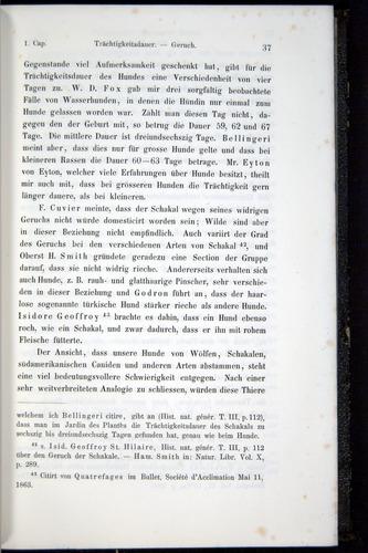 Image of Darwin-F914.1-1868-00037