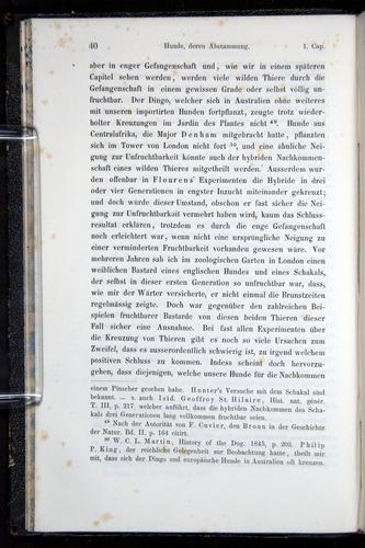 Image of Darwin-F914.1-1868-00040