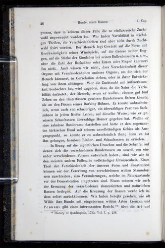Image of Darwin-F914.1-1868-00046