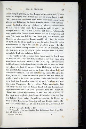 Image of Darwin-F914.1-1868-00049